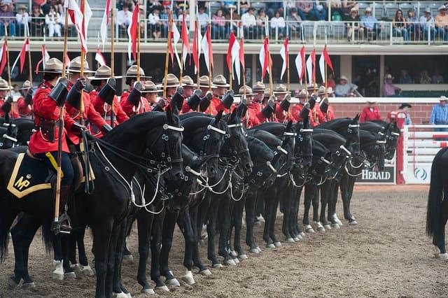加拿大皇家騎警表演 Photo Credit: Shane Kuhn / Calgary Stampede