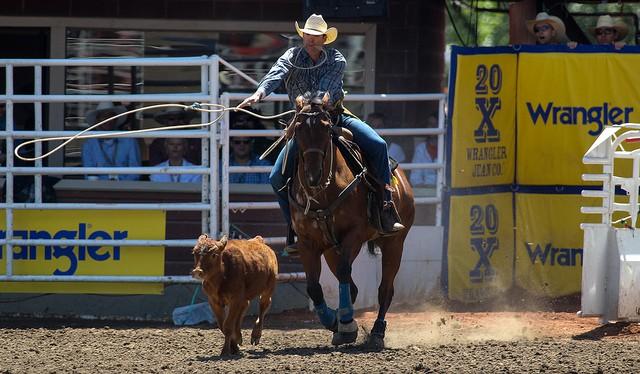 套小牛 Photo Credit: Mike Ridewood / Calgary Stampede