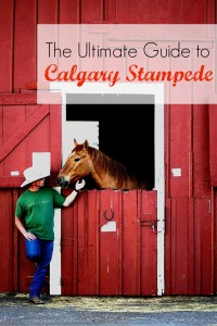 ultimate guide to calgary stampede
