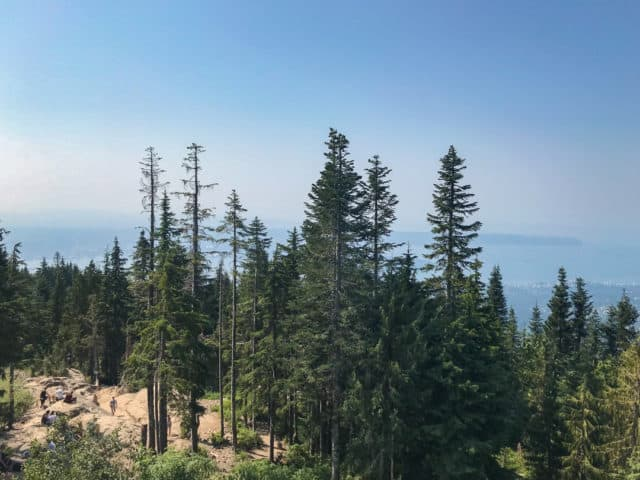 Things To Do In Vancouver Grouse Mountain