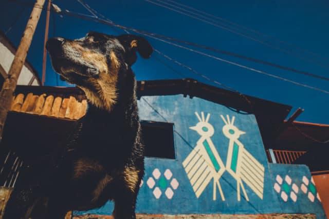 Santa Catarina Palopo Guatemala, a Mayan village around Lake Atitlan