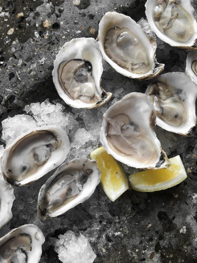 Scales Portland Maine Seafood Restaurant