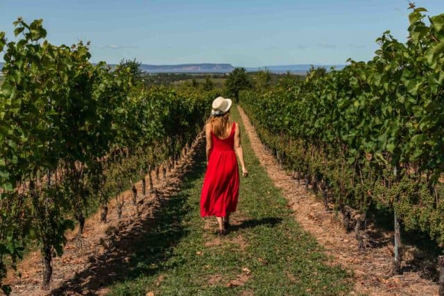 Luckett Winery Nova Scotia Holidays