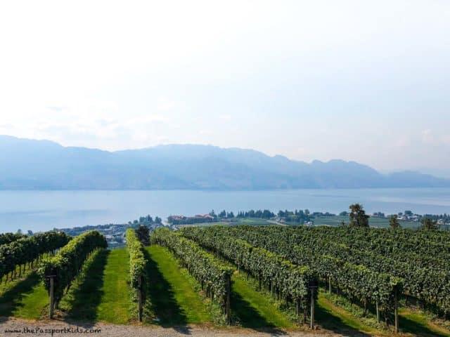best wineries in kelowna
