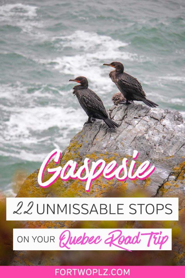 unmissable stops quebec road trip