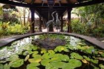 Pacific Resort Aitutaki Accommodation