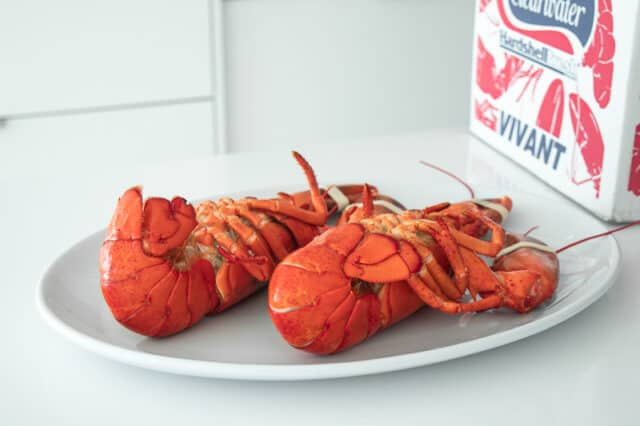 cooked hardshell lobster