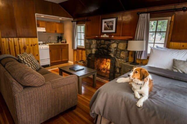 Cabin at Tekarra Lodge