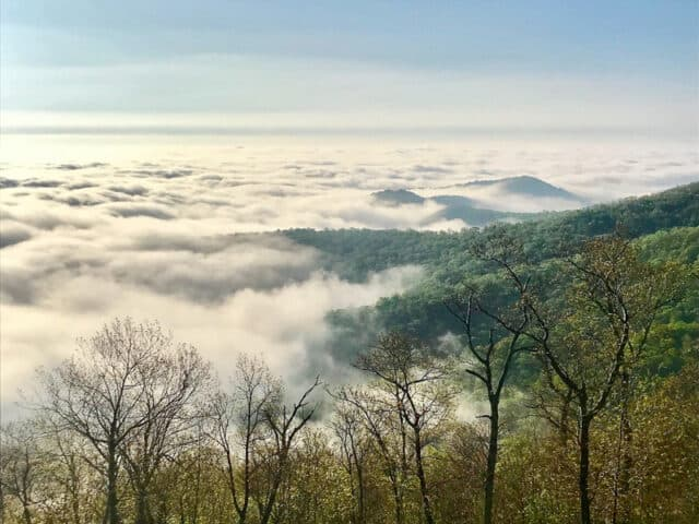 Shenandoah-National-Park-Overlook-Erin-Gifford-Go-Hike-Virginia_